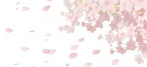 kougi_267_top
